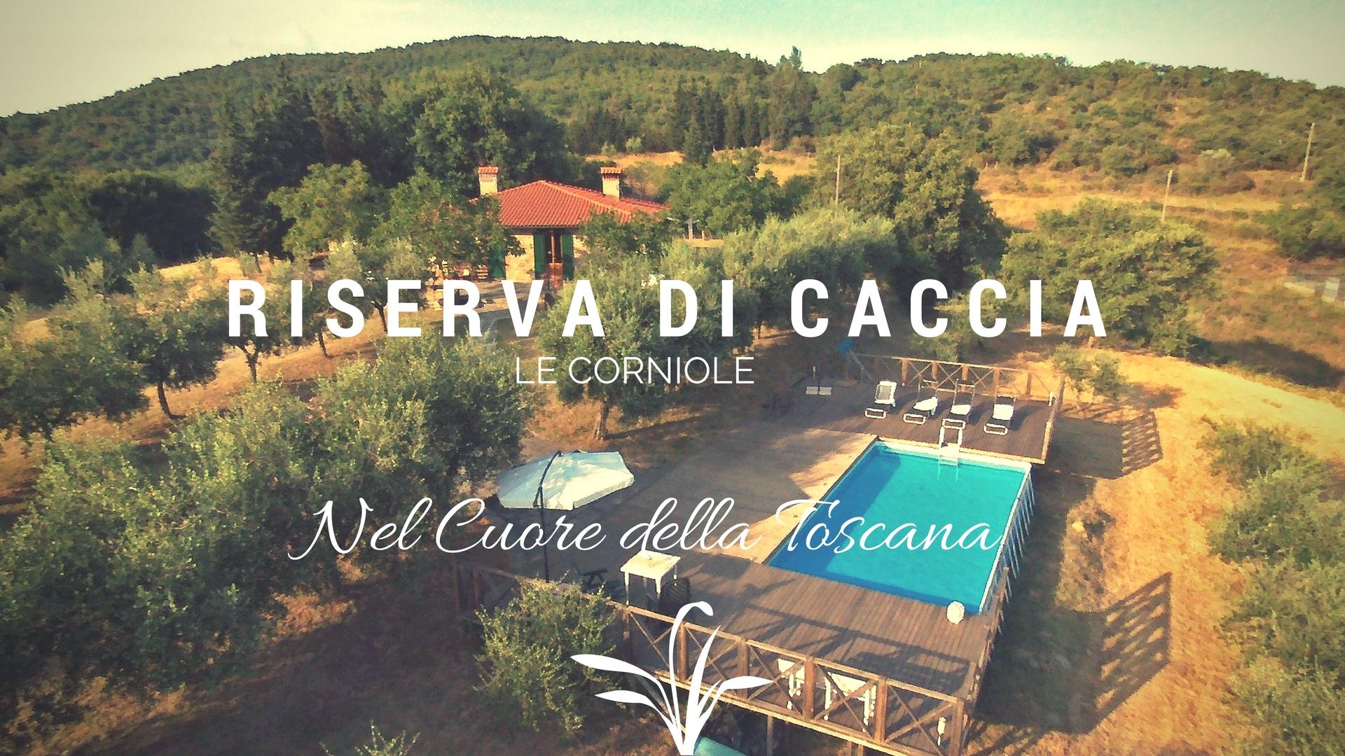 riserva_caccia_lecorniole_villa_b&b_casale_riserva_avventura_hunting_cinghiale_pernice_selvaggina_ (1).jpg