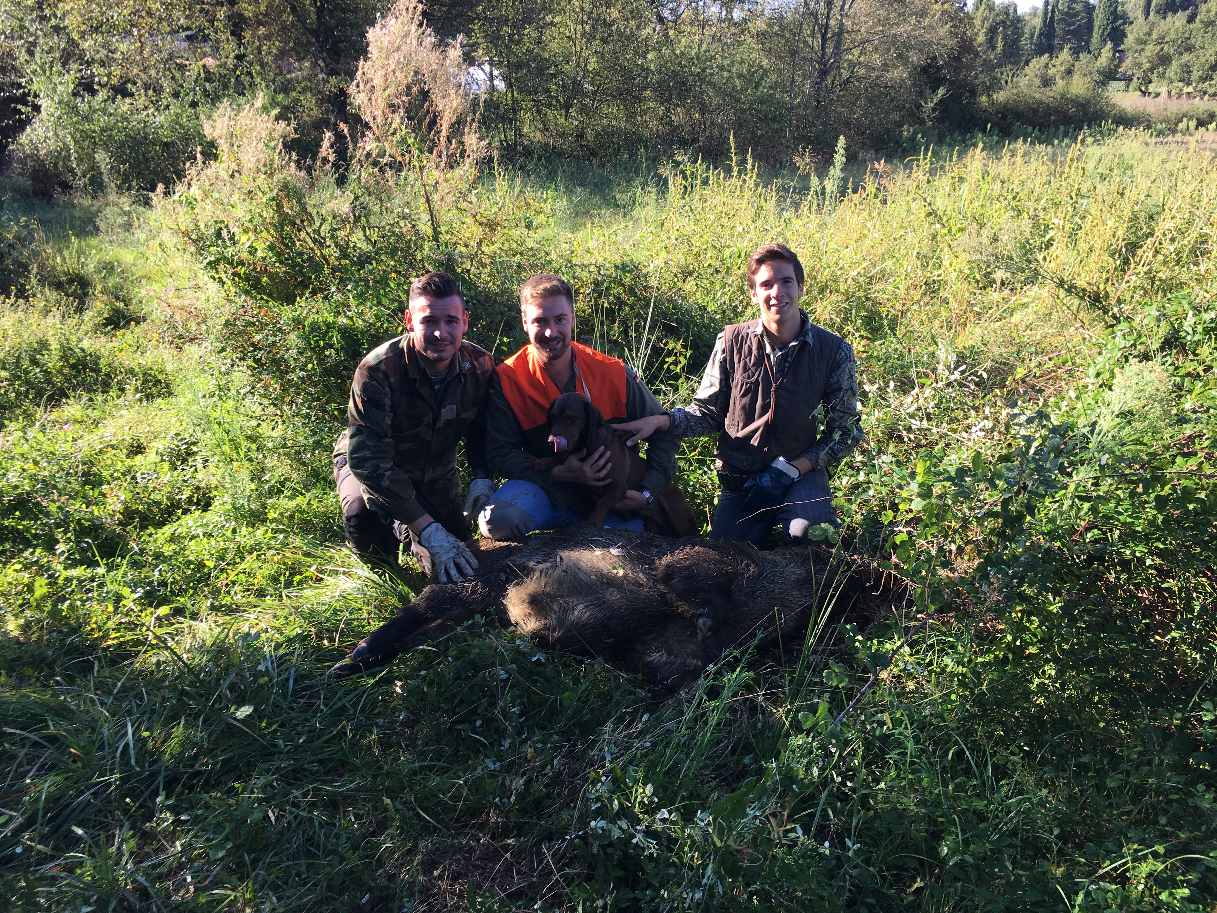 wild boar hunting in italy